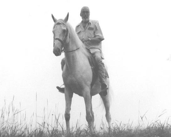 Huston's Horse