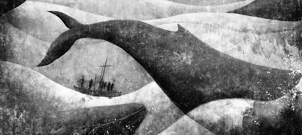 Moby Dick Gabriel Pacheco